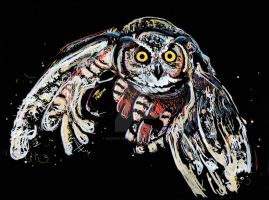 Owl fly by dessinateur777