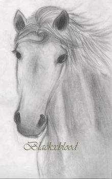 Horse by BlackxBlood