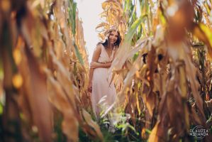 Lost in cornfield by ClaudiaFMiranda