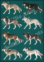 Natural Wolf Adopts 2016: CLOSED by Nature-Ridge-Adopts