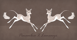 Lunemyr X Penumbra Fawn by SunsetRevelation