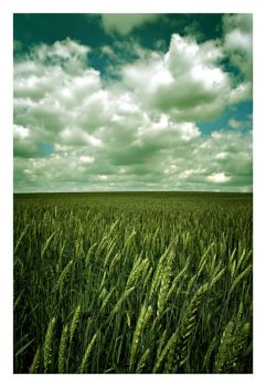 somewhere beyond my normal by jermio