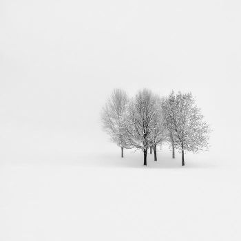 Lonely - Winter 2010 by Klarens-photography