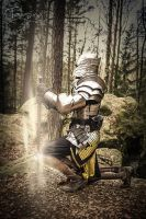 golden.paladin by creativeIntoxication