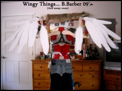 Wingy things by Magpieb0nes