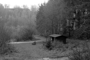 little house at the forrest by LadyUrsula