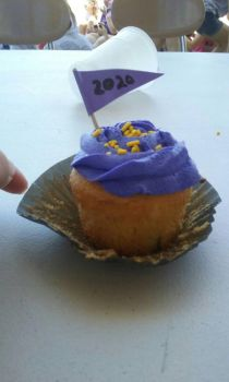 End of school field day cupcake! by shawn2002