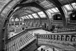 Natural history Museum 146-13j by Haywood-Photography