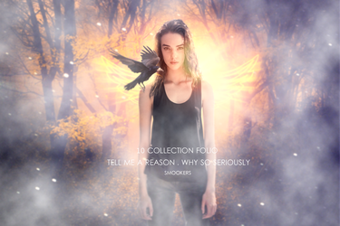 10 Collection Fotolia by smookers1