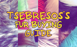 Fur Buying Guide by Tsebresos