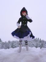 Mio in the snow II by idrilkeps