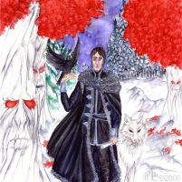 ASOIAF: Lord Commander by nejna