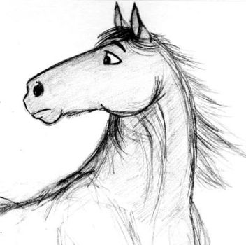 Another horse cartoon sketch by SarahEsen