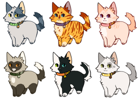 Cat Adopts! by Lindsbees