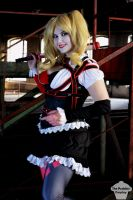 Harley Quinn (Arkham Knight) 3 by ThePuddins