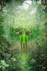 The Spirit of the Rainforest by janhein