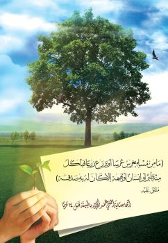 Sowing seeds and planting trees - AR by ahmad-y