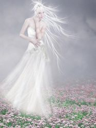 .. White.. by Flore-stock