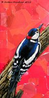 Le rouge - Great spotted woodpecker by flysch