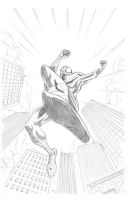 The Spectacular Spider-Man by NJValente