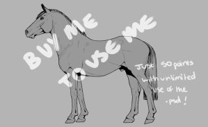 Horse Lineart by horsy1050