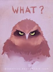 owl what by Apofiss