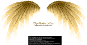 Simplistic Wing - Golden by Thy-Darkest-Hour