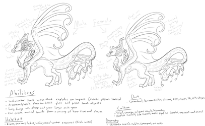 Sirenwing Quick Species Reference by AprilSilverWolf