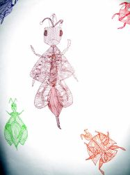 Pattern insects by Benji7