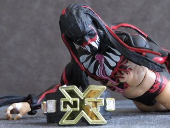 WWE MATTEL ELITE SERIES 41 FINN BALOR by imranbecks