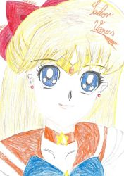 Sailor Venus by FlowerStudio