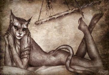 Skyrim  Khajiit by Agregor