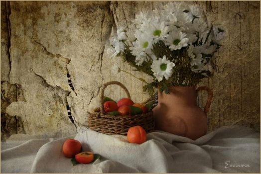 Fruits-and-Flowers by Escara40