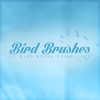 Bird Brushes Pack by TheSwordOfDeath