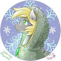 Winter Gray bust [prize] by Aurialudzic