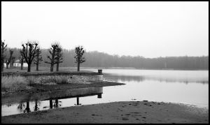 Winter Tristesse #3 by Roger-Wilco-66