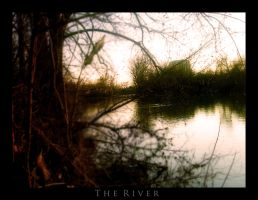 The River by SEnigmaticX