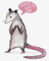 Possums are Cute Too by SpycyHorror