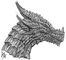 just a dragon head... by MetalDragoness