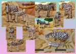 Zoo Tycoon Paper Collection - Common Zebra by DrWheelieMobile