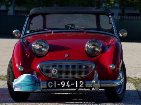 Austin Healey frog eye by Pippa-pppx