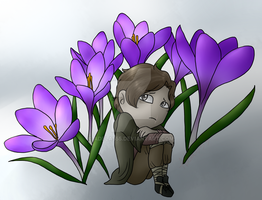 Crocus by Adela555