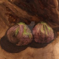 Two Little Figs Ink and Watercolor Sketch by ElegantlyEccentric