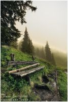 Benches After the Rain III by Argolith