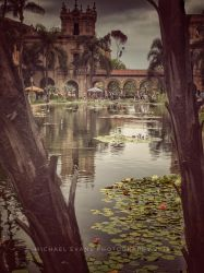 View of the Pond by creativemikey