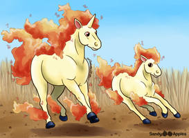 Wild Fire by Sandy--Apples