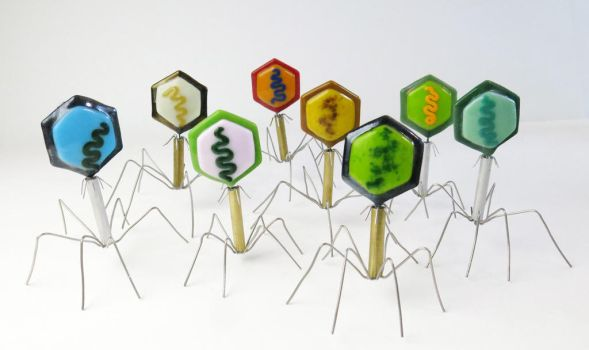 Bacteriophage Fused Glass And Metal Sculptures by trilobiteglassworks