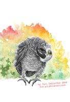 Grey African Parrot Watercolor, September 2016 by five-pm