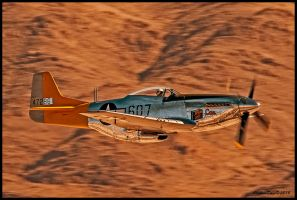 P-51 Mustang Spam Can by AirshowDave