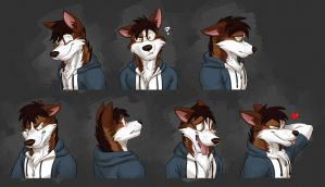 Commission: Beta's Expression Sheet by Temiree